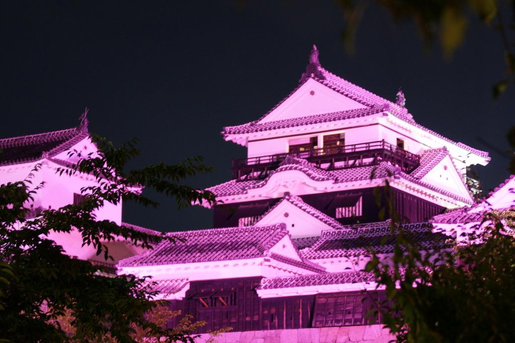 いつもと違う松山城
