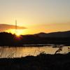 朝焼けの吉井川