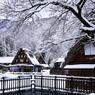 冬の五箇山雪景色
