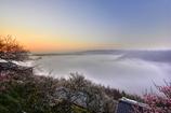 梅渓の夜明け 雲海