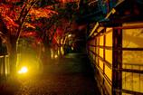 室生寺ライトアップ 影絵