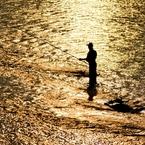 NIKON NIKON D2Xで撮影した(金の川その弐)の写真(画像)
