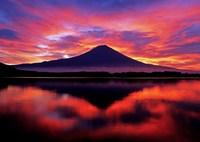 MAMIYA RZ67 PROFESSIONAL IIで撮影した(焔(赤))の写真(画像)