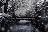 雪の降る町を
