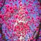 花柄のフレーム