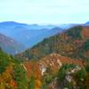 色づく山々