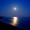 月夜に煌めく