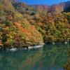 祖山ダム湖の紅葉