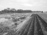 BW - 冬の河原