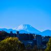 浮かび上がる富士山