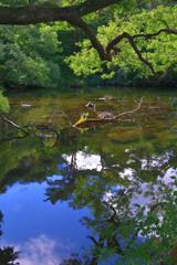 五色沼の空色