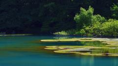五色沼の輝き