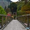 奥多摩の吊り橋