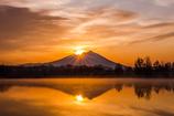 The Sun Also Rises Ⅱ