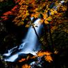 秋色に染まる滝