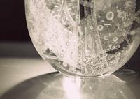 FUJIFILM X-A1で撮影した(とじこめて)の写真(画像)