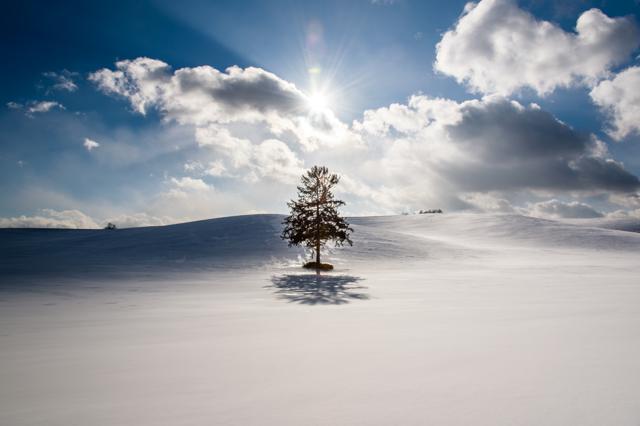 陰と陽の境界線