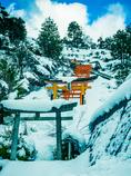 雪中の稲荷神社