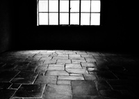 PANASONIC DMC-GX8で撮影した(Grauen -光は闇を作る-)の写真(画像)