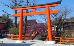 早春の下鴨神社 その3