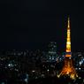 NIKON NIKON D700で撮影した(Tokyo Tower)の写真(画像)