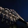 NIKON NIKON D700で撮影した(暗闇の恐竜)の写真(画像)