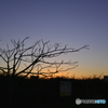 ある日の夕景---④