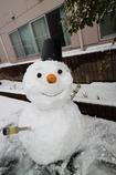 雪だるま~5年ぶりの再会