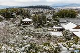 東山の雪景色