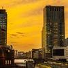 東京駅の夕景