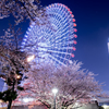 横浜夜景5