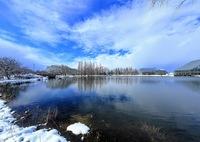 CANON Canon EOS 5D Mark IIIで撮影した(冬の中央植物園)の写真(画像)
