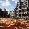 Tapis de Fleurs, Bruxelles, BE