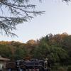 秋の生田緑地