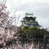 大阪城と梅
