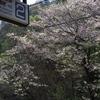 京王高尾山口駅‐0904