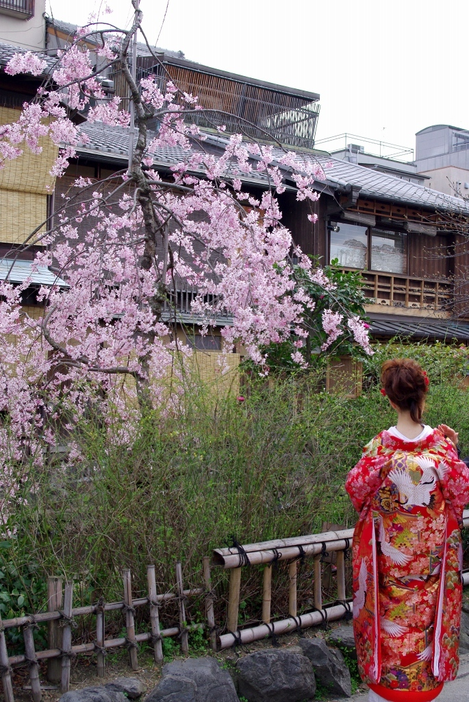 祇園白川-0903