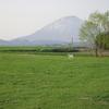 羊蹄山1‐0905