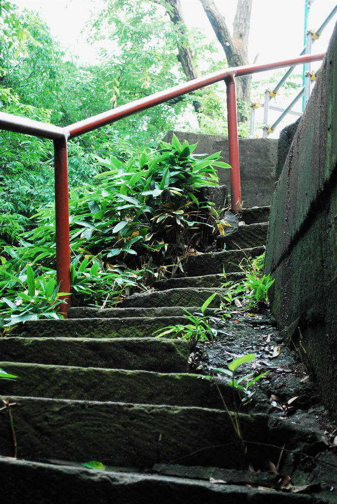 曲がりくねった階段