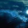 揺れる水面