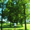 歩く(夏の時を刻んで)
