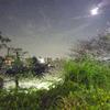 4月5日 西郷山公園