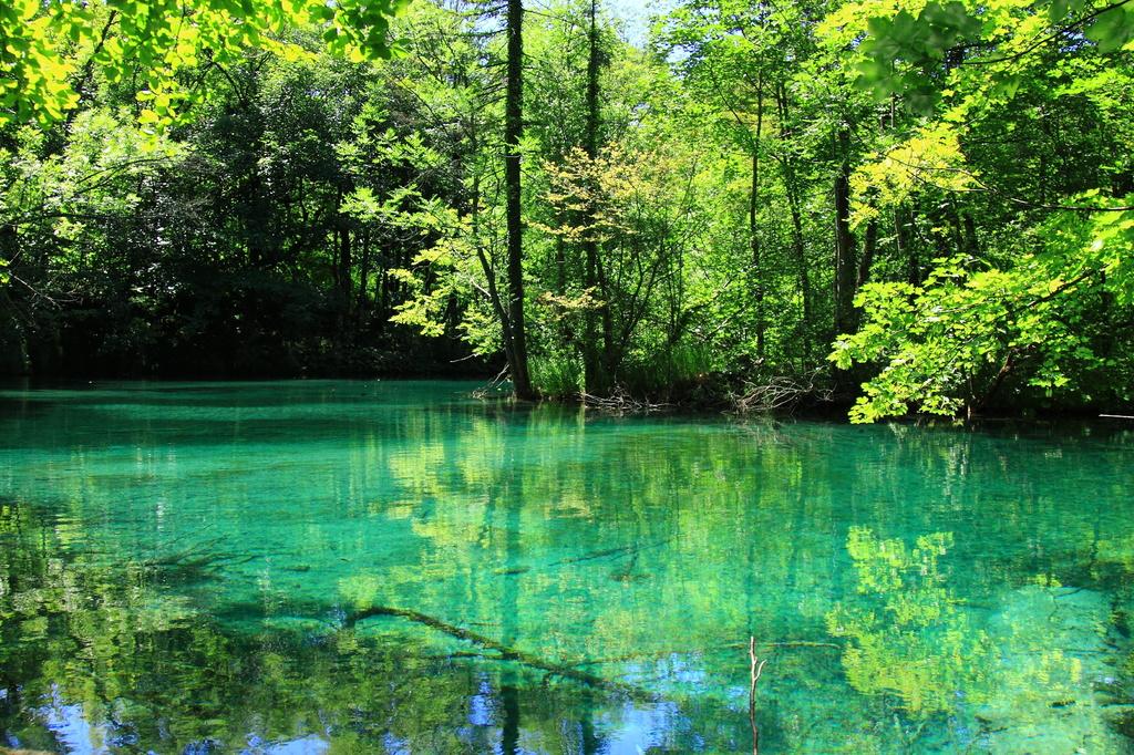 妖精の住む泉