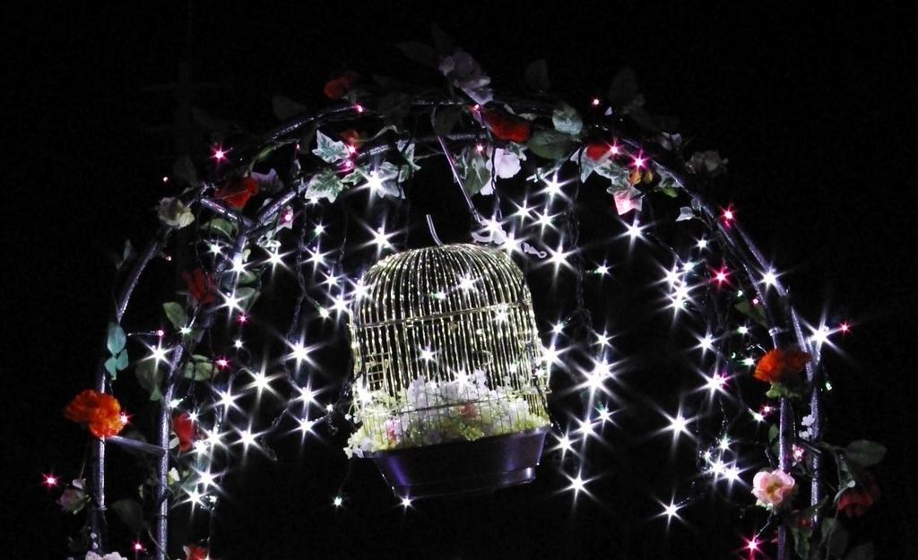煌びやかな鳥籠
