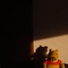 クマの孤独