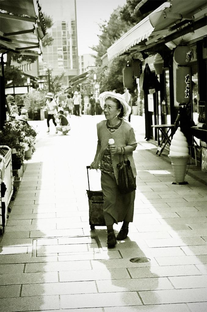 夏の楽しみ - Old Friends 18 -