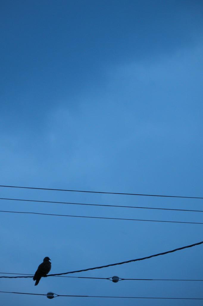 今日の空 2009.09.27
