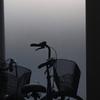 自転車・シルエット