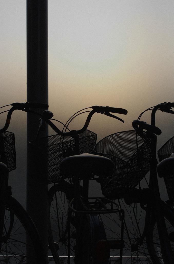 夕方自転車