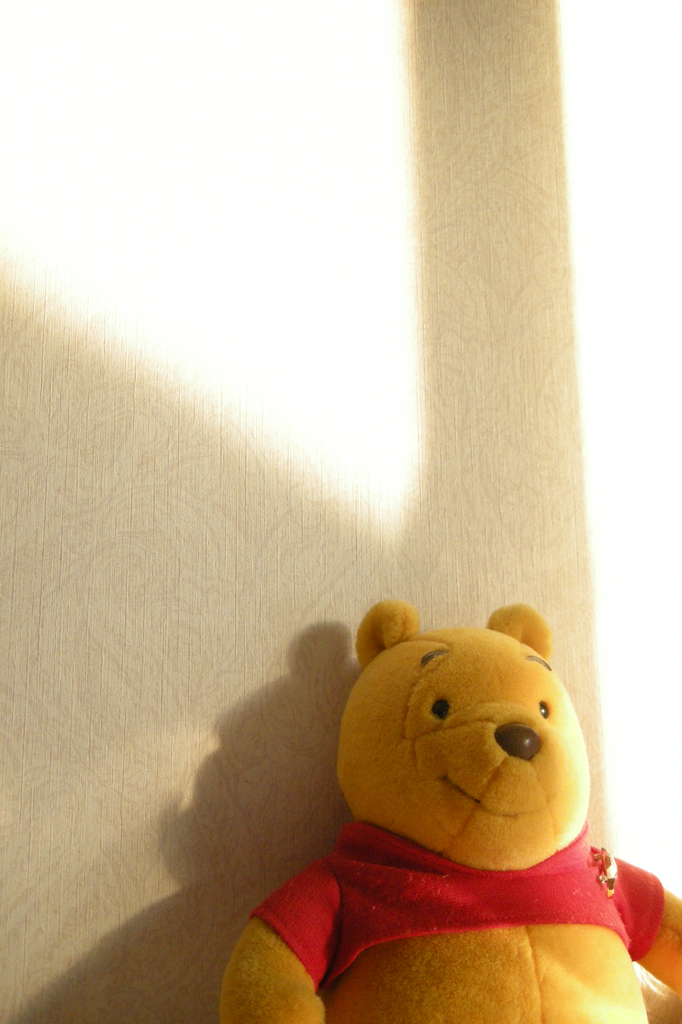 クマの幸福
